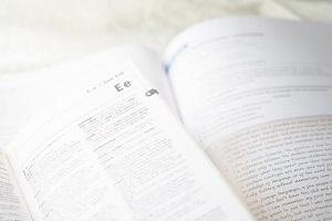 語学(英語・その他言語)イメージ